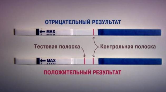 Как сделать беременный тест