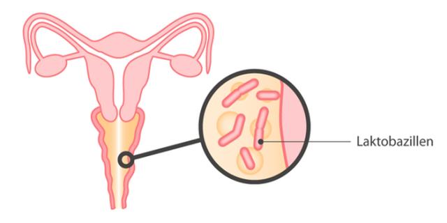 возможна ли поза 69 при беременности